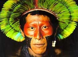 Индианците Гуарани
