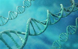 Сензационно генетично откритие може да пренапише историята на човечеството