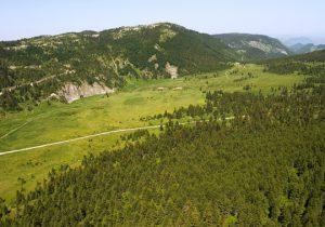 Дървеното село на разказвача на приказки Кустурица